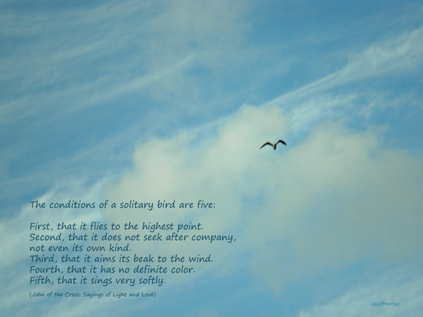 A_solitary_bird_signed_and_dark_t_2